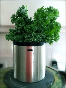 kale in juicer